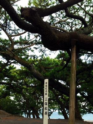 美保の松原ー1.jpg