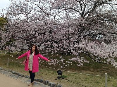 2015.4.2姫路城1.jpg