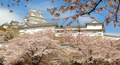 2015.4.2姫路城3.jpg